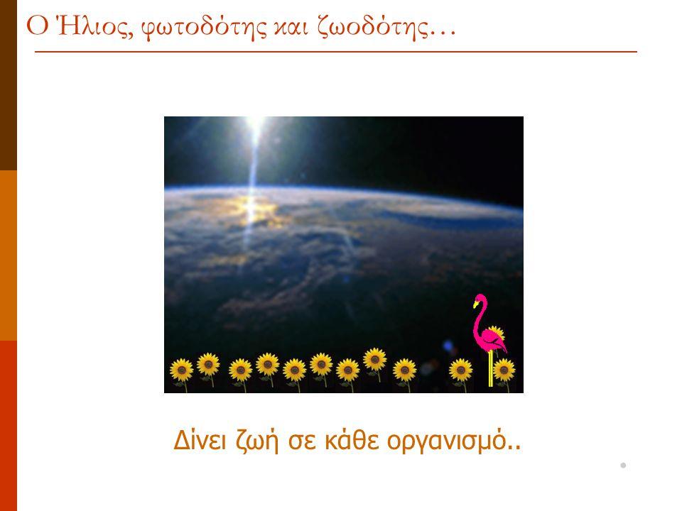 Δίνει ζωή σε κάθε οργανισμό.. Ο Ήλιος, φωτοδότης και ζωοδότης…