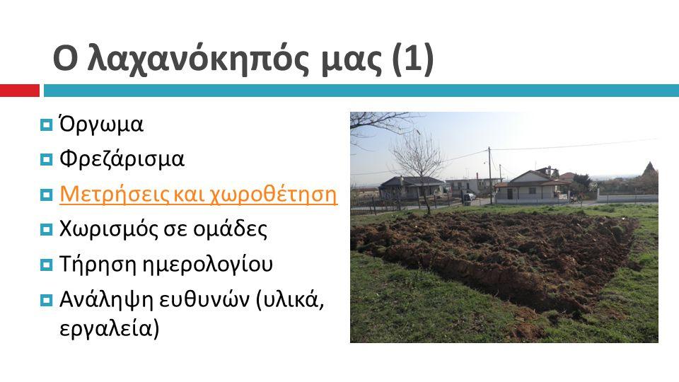 Ο λαχανόκηπός μας (1)  Όργωμα  Φρεζάρισμα  Μετρήσεις και χωροθέτηση Μετρήσεις και χωροθέτηση  Χωρισμός σε ομάδες  Τήρηση ημερολογίου  Ανάληψη ευ