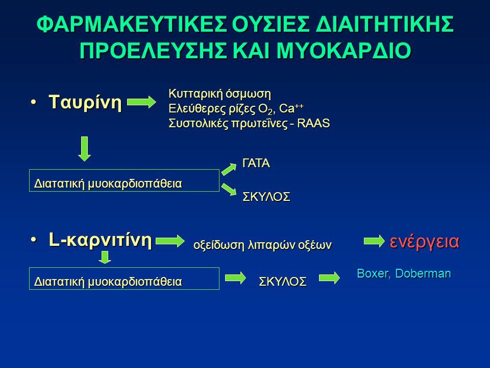 ΦΑΡΜΑΚΕΥΤΙΚΕΣ ΟΥΣΙΕΣ ΔΙΑΙΤΗΤΙΚΗΣ ΠΡΟΕΛΕΥΣΗΣ ΚΑΙ ΜΥΟΚΑΡΔΙΟ ΤαυρίνηΤαυρίνη L-καρνιτίνηL-καρνιτίνη Κυτταρική όσμωση Κυτταρική όσμωση Ελεύθερες ρίζες O 2, Ca ++ Ελεύθερες ρίζες O 2, Ca ++ Συστολικές πρωτεΐνες - RAAS Συστολικές πρωτεΐνες - RAAS Διατατική μυοκαρδιοπάθεια ΓΑΤΑΣΚΥΛΟΣ οξείδωση λιπαρών οξέων Διατατική μυοκαρδιοπάθεια ΣΚΥΛΟΣ Boxer, Doberman ενέργεια