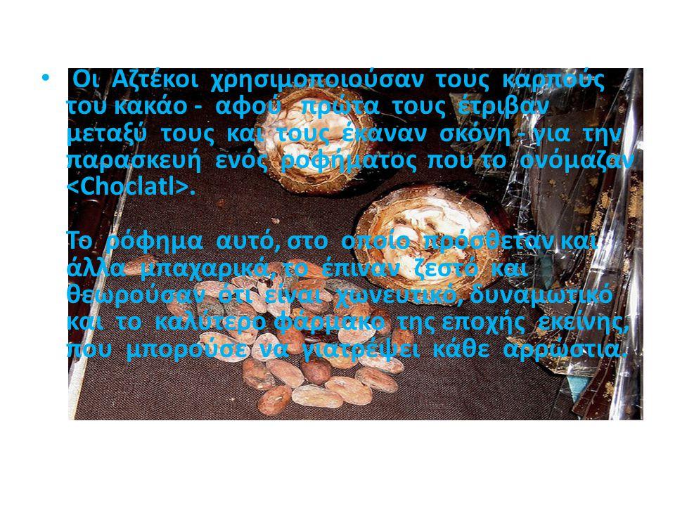 Οι Αζτέκοι χρησιμοποιούσαν τους καρπούς του κακάο - αφού πρώτα τους έτριβαν μεταξύ τους και τους έκαναν σκόνη - για την παρασκευή ενός ροφήματος που τ