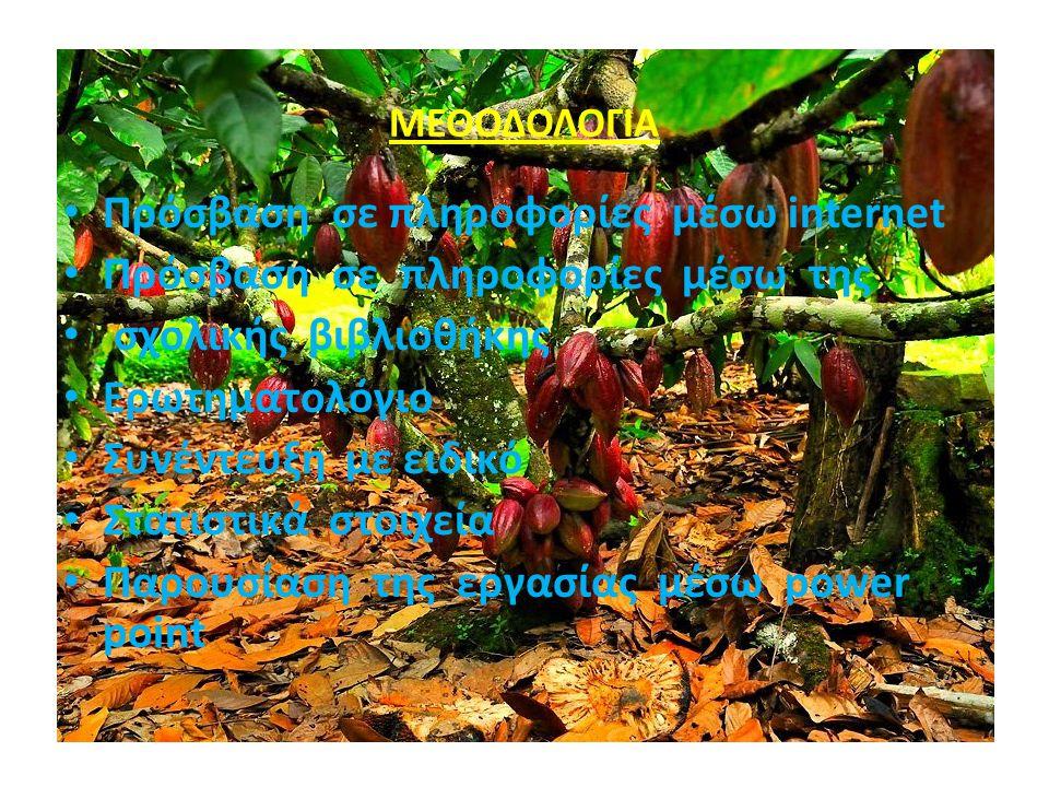 Το κακαόδεντρο αναπτύσσεται συνήθως κάτω από δάση, φυτεμένα στη σκιά δέντρων ή ενδιάμεσα άλλων εμπορικών καλλιεργειών που προστατεύουν τα δέντρα του κακάου.