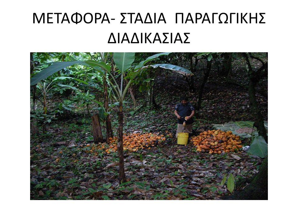 ΜΕΤΑΦΟΡΑ- ΣΤΑΔΙΑ ΠΑΡΑΓΩΓΙΚΗΣ ΔΙΑΔΙΚΑΣΙΑΣ