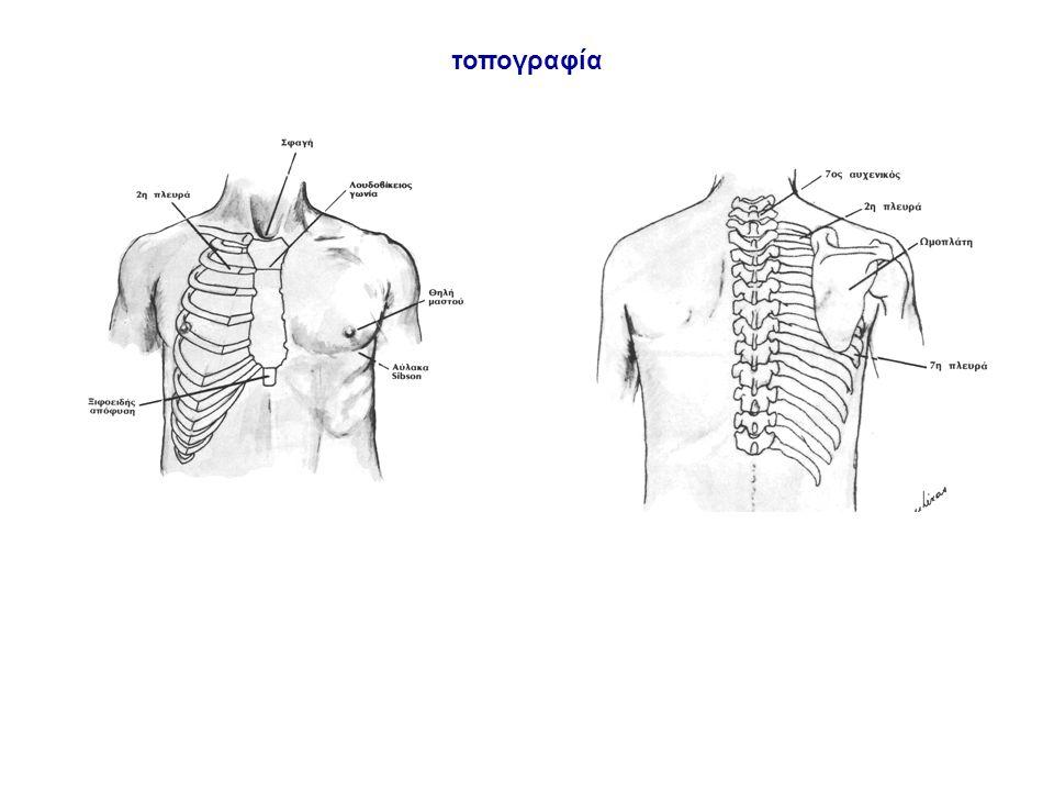 Κακώσεις θώρακα - Διακρίνονται: -απλές ή διάχυτες -ανοικτές ή κλειστές κλειστές: αιματώματα, αερώδεις κύστεις, πυκνώσεις ανοικτές: αιμοθώρακα, πνευμοθώρακα ή αιμοπνευμοθώρακα Υγρός πνεύμονας - Ορισμός: συσσώρευση υγρών μέσα στο πνευμονικό παρέγχυμα και τις κυψελίδες - Συμπτώματα: βήχας, δύσπνοια, διέγερση - Ευρήματα: επισκόπηση κυάνωση, ταχύπνοια ακρόαση υγροί ρόγχοι και συρίττοντες ψηλάφηση ταχυκαρδία Κακώσεις πνεύμονα