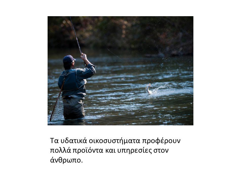 Τα υδατικά οικοσυστήματα προφέρουν πολλά προϊόντα και υπηρεσίες στον άνθρωπο.