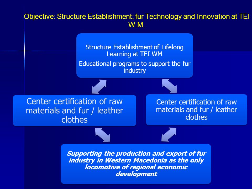 Objective: Structure Establishment; fur Technology and Innovation at TEI W.Μ.