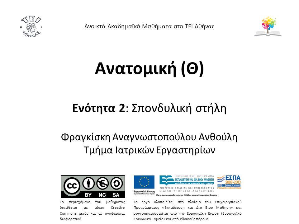 Ανατομική (Θ) Ενότητα 2: Σπονδυλική στήλη Φραγκίσκη Αναγνωστοπούλου Ανθούλη Τμήμα Ιατρικών Εργαστηρίων Ανοικτά Ακαδημαϊκά Μαθήματα στο ΤΕΙ Αθήνας Το π