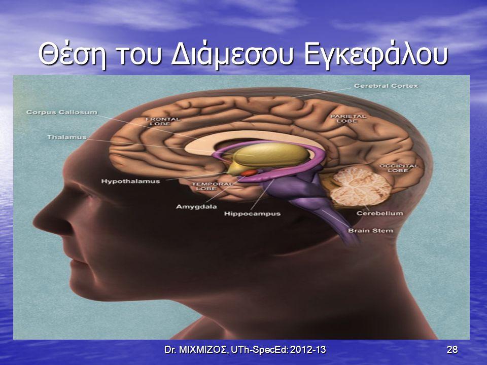 Θέση του Διάμεσου Εγκεφάλου Dr. ΜΙΧΜΙΖΟΣ, UTh-SpecEd: 2012-13 28