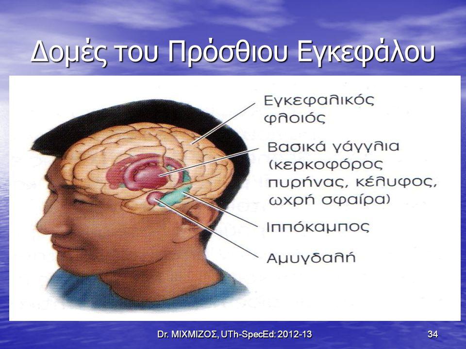 Δομές του Πρόσθιου Εγκεφάλου Dr. ΜΙΧΜΙΖΟΣ, UTh-SpecEd: 2012-13 34