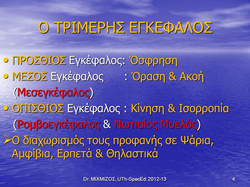 6. Το ΚΝΣ έχει πολλαπλά Επίπεδα Λειτουργίας Dr. ΜΙΧΜΙΖΟΣ, UTh-SpecEd: 2012-13 75