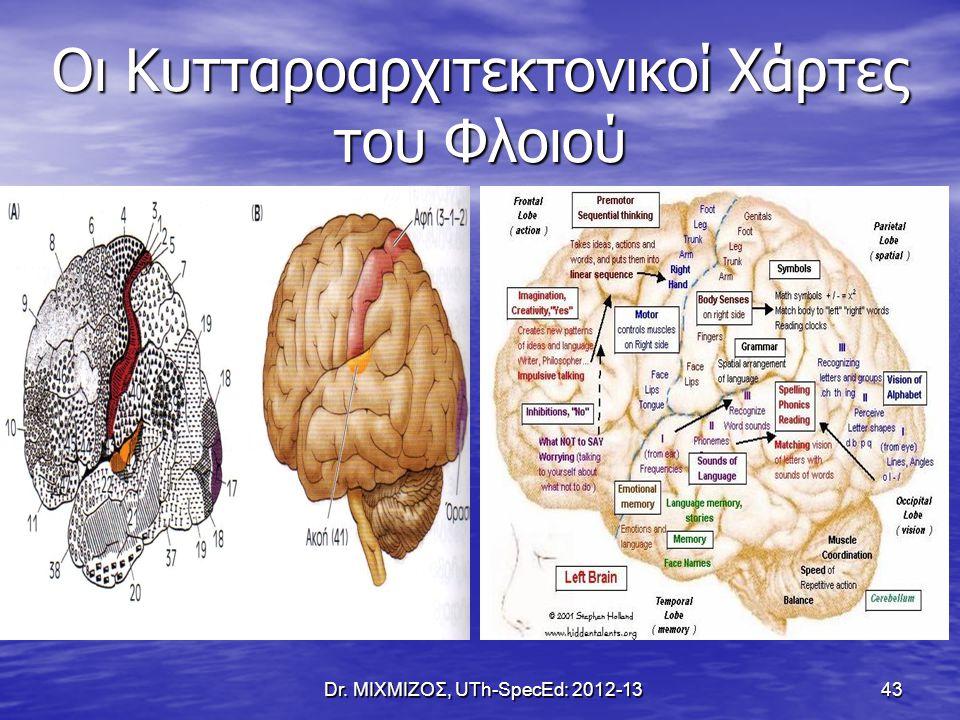Οι Κυτταροαρχιτεκτονικοί Χάρτες του Φλοιού Dr. ΜΙΧΜΙΖΟΣ, UTh-SpecEd: 2012-13 43