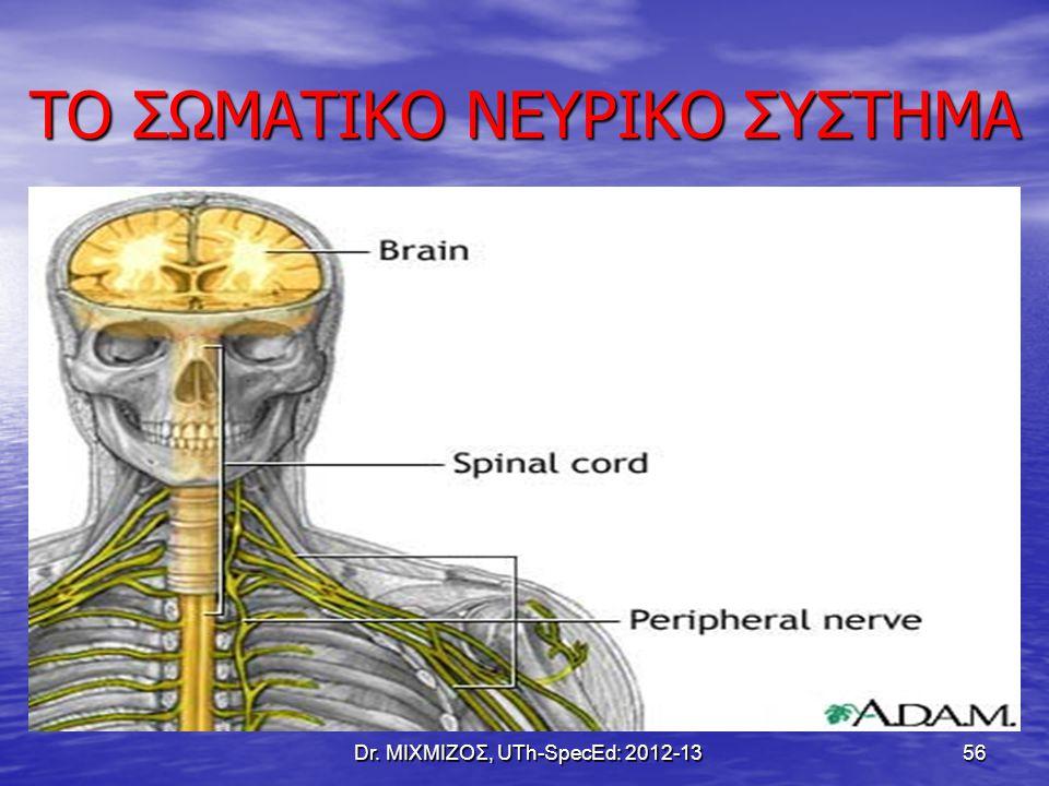 ΤΟ ΣΩΜΑΤΙΚΟ ΝΕΥΡΙΚΟ ΣΥΣΤΗΜΑ Dr. ΜΙΧΜΙΖΟΣ, UTh-SpecEd: 2012-13 56