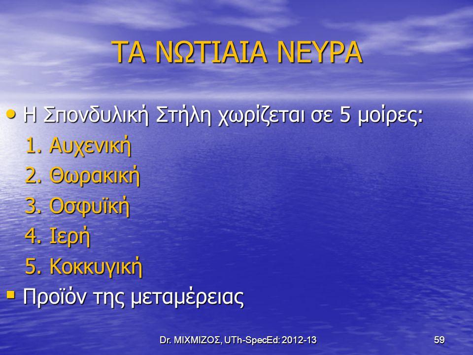 ΤΑ ΝΩΤΙΑΙΑ ΝΕΥΡΑ Η Σπονδυλική Στήλη χωρίζεται σε 5 μοίρες: Η Σπονδυλική Στήλη χωρίζεται σε 5 μοίρες: 1. Αυχενική 1. Αυχενική 2. Θωρακική 2. Θωρακική 3