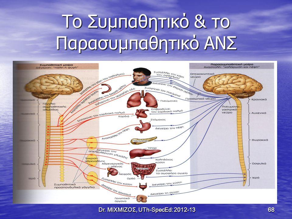 Το Συμπαθητικό & το Παρασυμπαθητικό ΑΝΣ Dr. ΜΙΧΜΙΖΟΣ, UTh-SpecEd: 2012-13 68