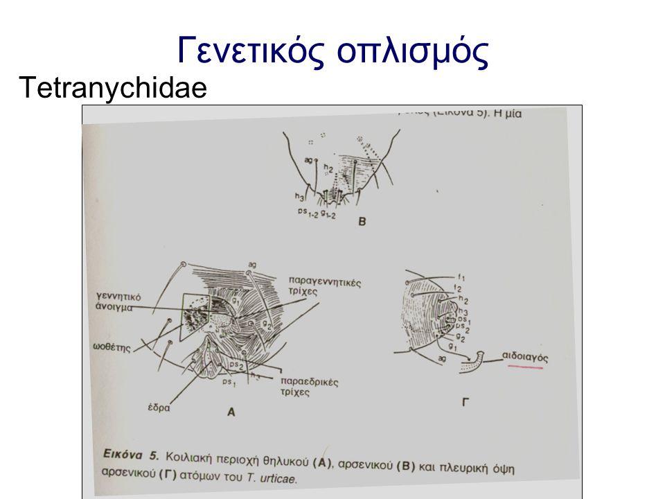Γενετικός οπλισμός Tetranychidae