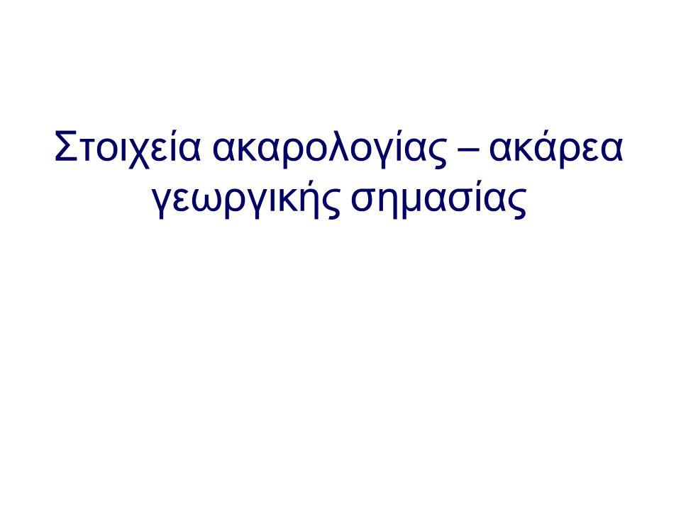 Σύνοψη της σημερινής διάλεξης 1.Εισαγωγή στην ακαρολογία 2.Κυριότερες τάξεις και υποτάξεις ακάρεων 1.Parasitiformes 1.Mesostigmata 2.Metastigmata 2.Acariformes 1.Prostigmata 2.Astigmata 3.Cryptostigmata 3.Μορφολογία ακάρεων 1.Εξωτερική 2.Εσωτερική 4.Ανάπτυξη 1.Φυτοφάγα Teteanychidae 2.Αρπακτικά Phytoseiidae 5.Ακάρεα και φυτό ξενιστές 6.Ανακεφαλαίωση – συμπεράσματα
