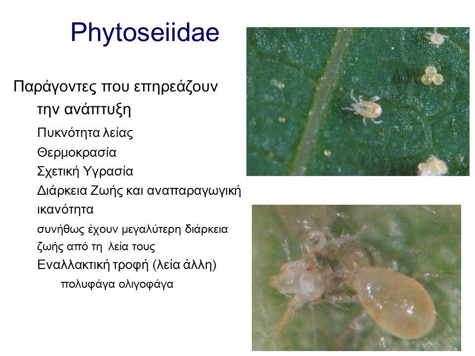 Phytoseiidae Παράγοντες που επηρεάζουν την ανάπτυξη Πυκνότητα λείας Θερμοκρασία Σχετική Υγρασία Διάρκεια Ζωής και αναπαραγωγική ικανότητα συνήθως έχου