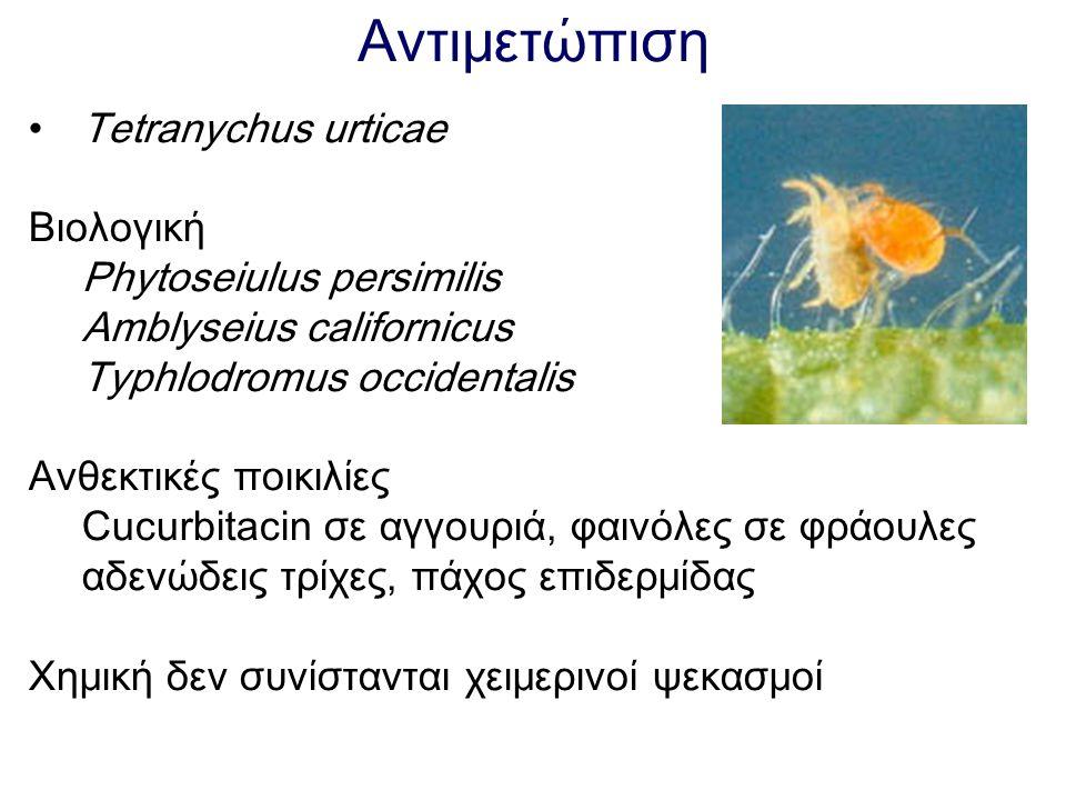 Αντιμετώπιση Tetranychus urticae Βιολογική Phytoseiulus persimilis Amblyseius californicus Typhlodromus occidentalis Ανθεκτικές ποικιλίες Cucurbitacin