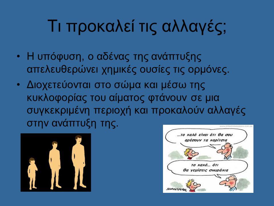 Οι πιο σημαντικές γυναικείες ορμόνες είναι τα οιστρογόνα.