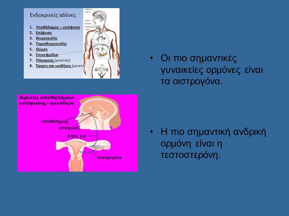 Σωματικές αλλαγές Αγόρια Κορίτσια Αύξηση ύψους Αύξηση ύψους Ανάπτυξη γεννητικών Ανάπτυξη γεννητικών οργάνων οργάνων Εμφάνιση τριχοφυΐας Εμφάνιση τριχοφυΐας Ακμή Ακμή Βραχνή φωνή Εμφάνιση περιόδου Αύξηση βάρους-μυς Αύξηση βάρους- λίπους Είναι η περίοδος που οι έφηβοι αισθάνονται περίεργα για το σώμα τους βλέποντας το να αλλάζει μορφή.
