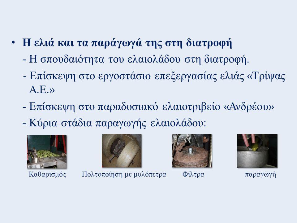 Η ελιά και τα παράγωγά της στη διατροφή - Η σπουδαιότητα του ελαιολάδου στη διατροφή. - Επίσκεψη στο εργοστάσιο επεξεργασίας ελιάς «Τρίψας Α.Ε.» - Επί