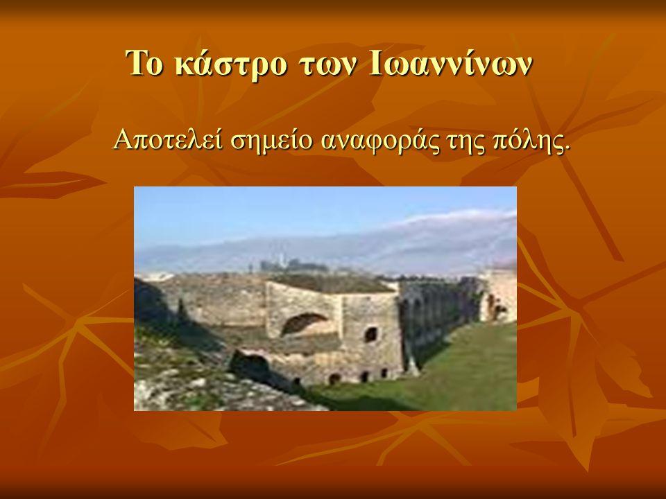 Το κάστρο των Ιωαννίνων Αποτελεί σημείο αναφοράς της πόλης. Αποτελεί σημείο αναφοράς της πόλης.