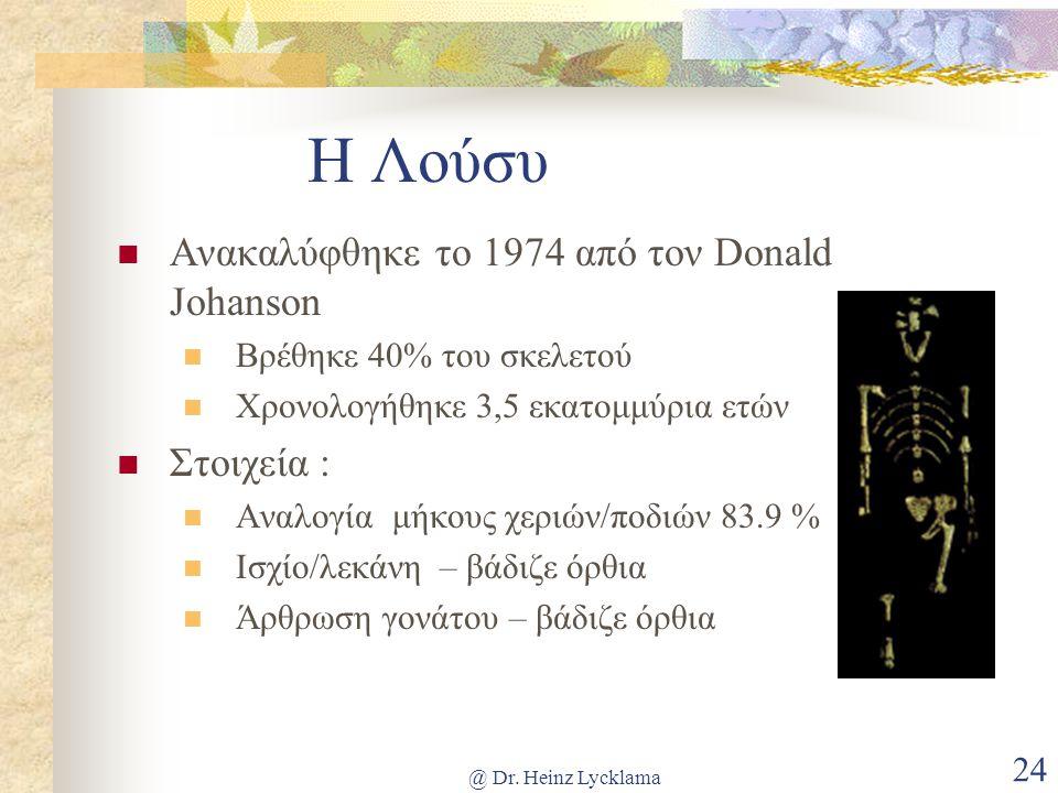 @ Dr. Heinz Lycklama 24 Η Λούσυ Ανακαλύφθηκε το 1974 από τον Donald Johanson Βρέθηκε 40% του σκελετού Χρονολογήθηκε 3,5 εκατομμύρια ετών Στοιχεία : Αν