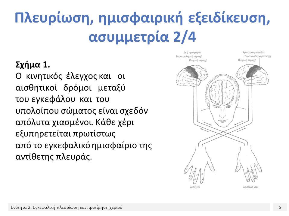 5 Ενότητα 2: Εγκεφαλική πλευρίωση και προτίμηση χεριού Πλευρίωση, ημισφαιρική εξειδίκευση, ασυμμετρία 2/4 Σχήμα 1. Ο κινητικός έλεγχος και οι αισθητικ