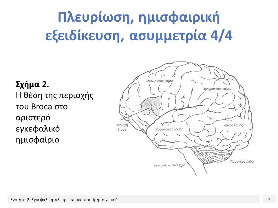 7 Ενότητα 2: Εγκεφαλική πλευρίωση και προτίμηση χεριού Πλευρίωση, ημισφαιρική εξειδίκευση, ασυμμετρία 4/4 Σχήμα 2. Η θέση της περιοχής του Broca στο α
