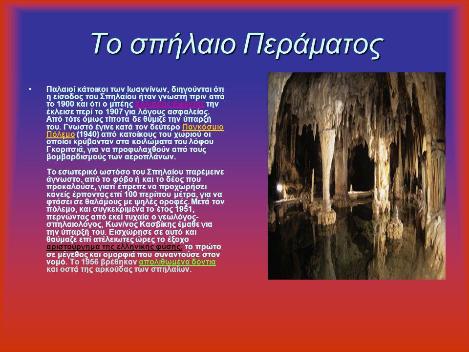 Το Κάστρο των Ιωαννίνων Το κάστρο των Ιωαννίνων αποτελεί σημείο αναφοράς της πόλης. Η σημερινή του μορφή οφείλεται στον Αλί Πασά ο οποίος ξαναχτίζει τ