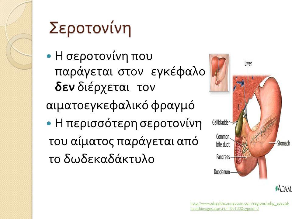 Σεροτονίνη Η σεροτονίνη που παράγεται στον εγκέφαλο δεν διέρχεται τον αιματοεγκεφαλικό φραγμό Η περισσότερη σεροτονίνη του αίματος παράγεται από το δω