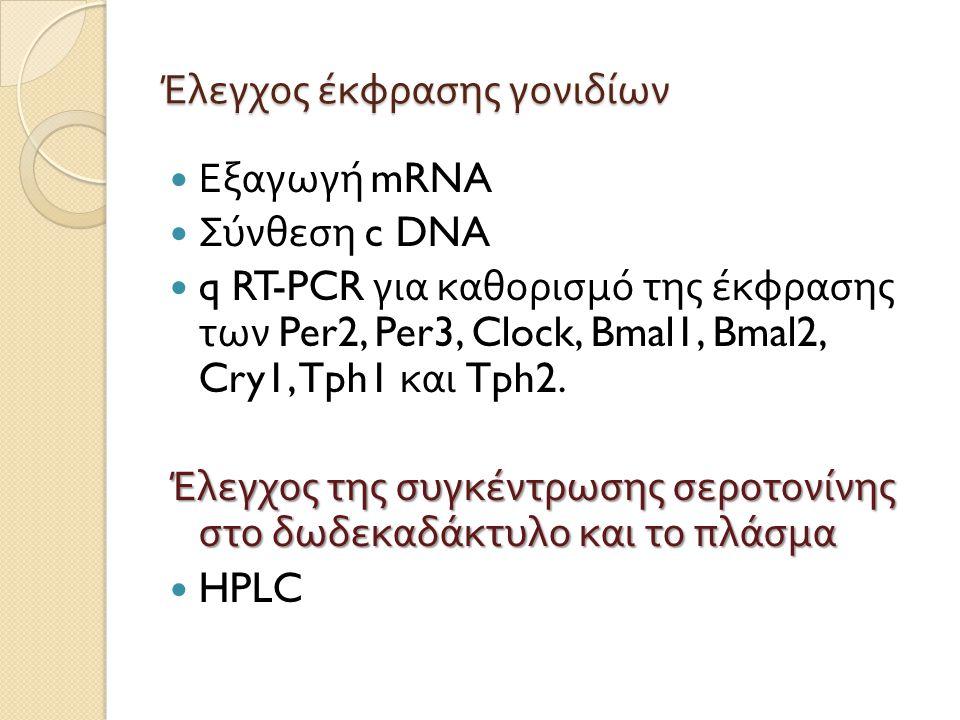 Έλεγχος έκφρασης γονιδίων Εξαγωγή mRNA Σύνθεση c DNA q RT-PCR για καθορισμό της έκφρασης των Per2, Per3, Clock, Bmal1, Bmal2, Cry1, Tph1 και Tph2. Έλε