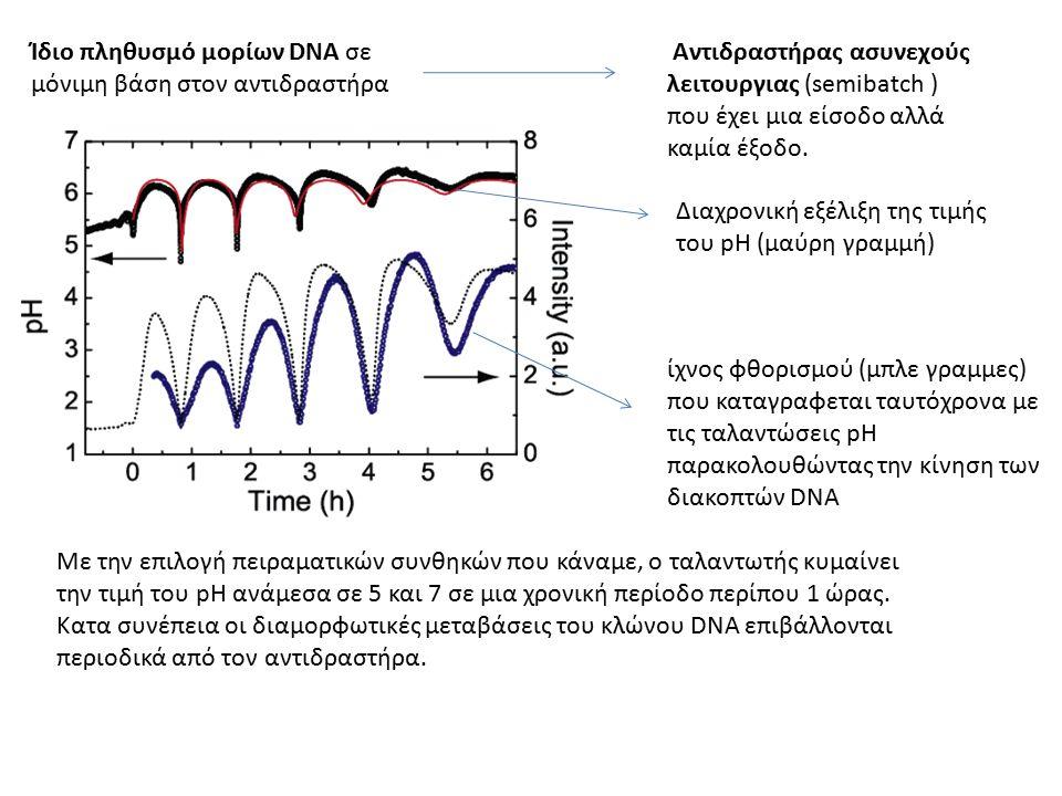 Ίδιο πληθυσμό μορίων DNA σε μόνιμη βάση στον αντιδραστήρα Αντιδραστήρας ασυνεχούς λειτουργιας (semibatch ) που έχει μια είσοδο αλλά καμία έξοδο.