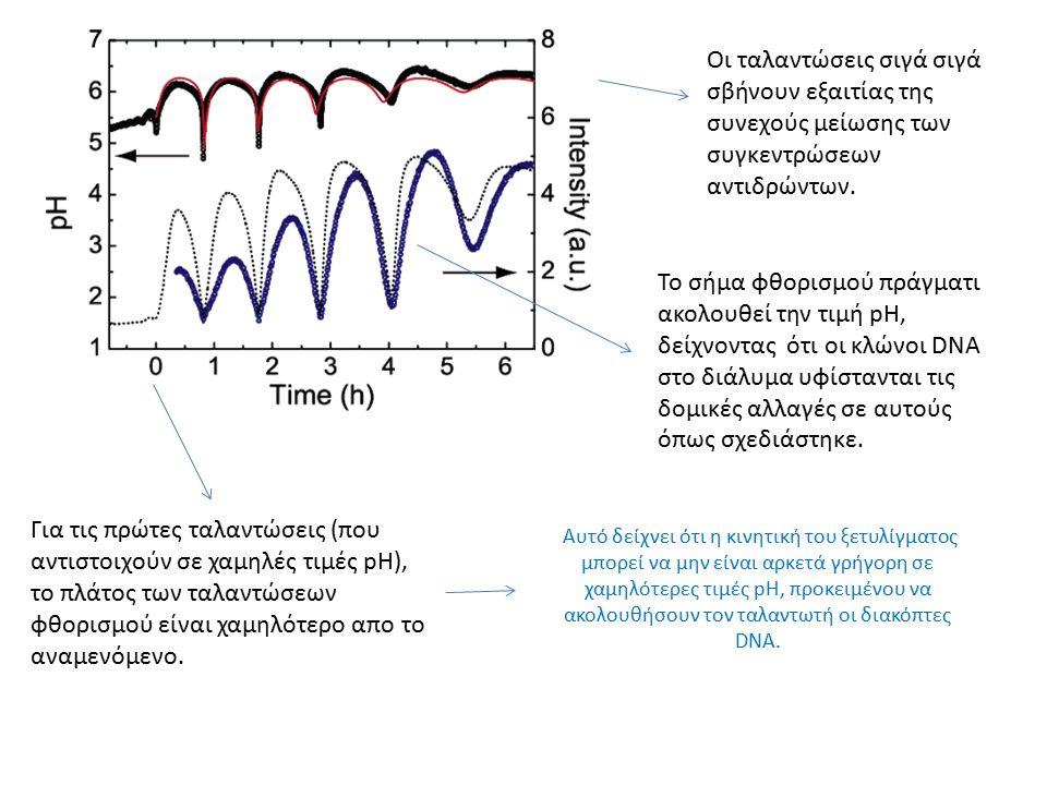 Οι ταλαντώσεις σιγά σιγά σβήνουν εξαιτίας της συνεχούς μείωσης των συγκεντρώσεων αντιδρώντων.