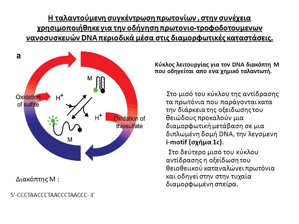 Η ταλαντούμενη συγκέντρωση πρωτονίων, στην συνέχεια χρησιμοποιήθηκε για την οδήγηση πρωτονιο-τροφοδοτουμενων νανοσυσκευών DNA περιοδικά μέσα στις διαμορφωτικές καταστάσεις.