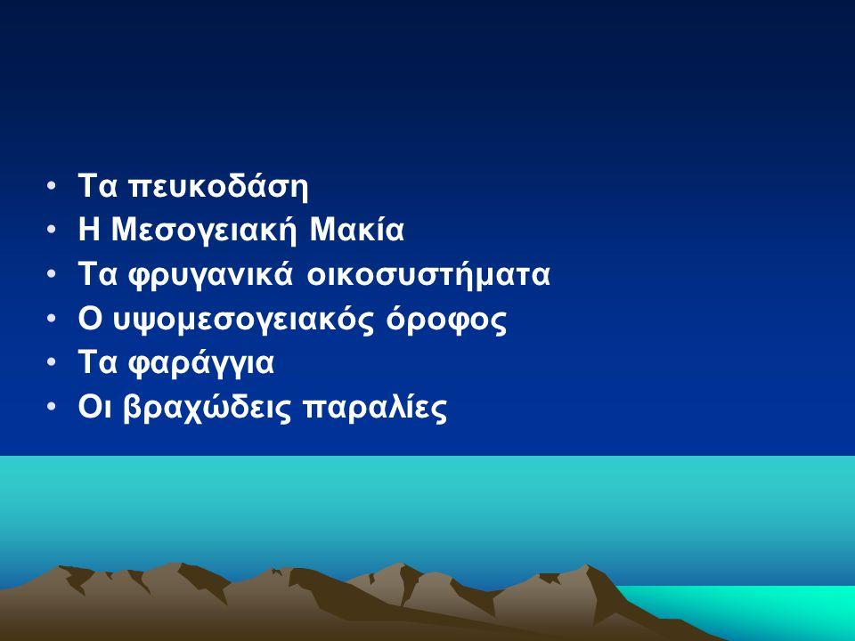 Τα πευκοδάση Η Μεσογειακή Μακία Τα φρυγανικά οικοσυστήματα Ο υψομεσογειακός όροφος Τα φαράγγια Οι βραχώδεις παραλίες