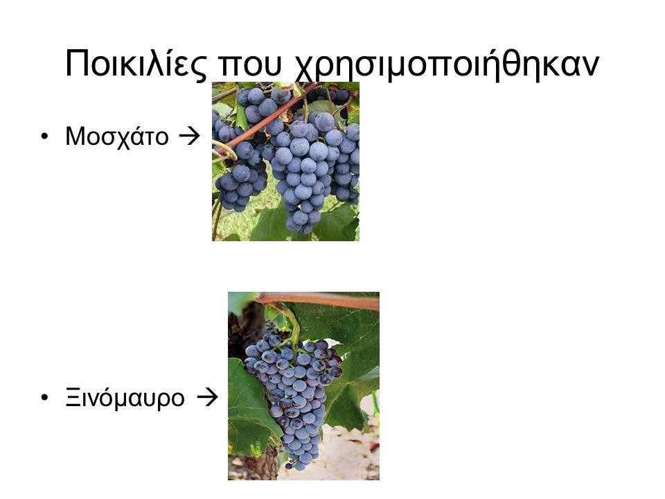 Ποικιλίες που χρησιμοποιήθηκαν Μοσχάτο  Ξινόμαυρο 