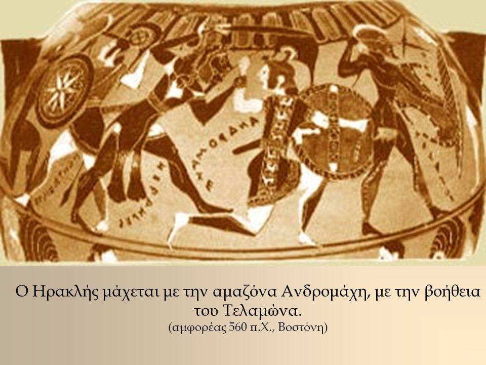 Ο Ηρακλής μάχεται με την αμαζόνα Ανδρομάχη, με την βοήθεια του Τελαμώνα. (αμφορέας 560 π.Χ., Βοστόνη)