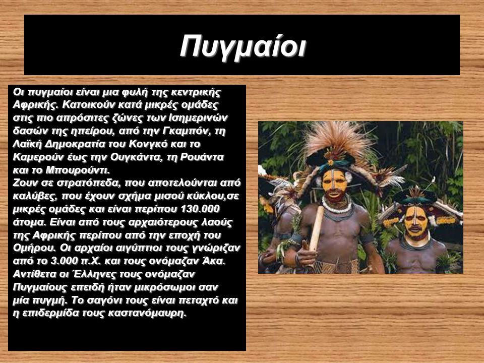 Πυγμαίοι Οι πυγμαίοι είναι μια φυλή της κεντρικής Αφρικής.