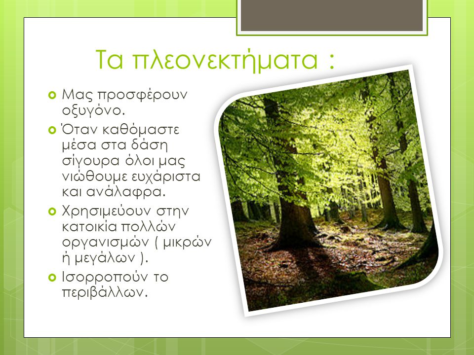 Τα πλεονεκτήματα :  Μας προσφέρουν οξυγόνο.  Όταν καθόμαστε μέσα στα δάση σίγουρα όλοι μας νιώθουμε ευχάριστα και ανάλαφρα.  Χρησιμεύουν στην κατοι