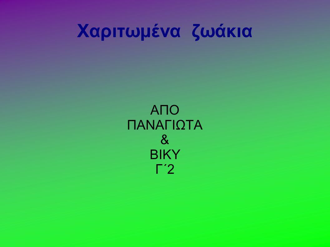 Χαριτωμένα ζωάκια ΑΠΟ ΠΑΝΑΓΙΩΤΑ & ΒΙΚΥ Γ΄2