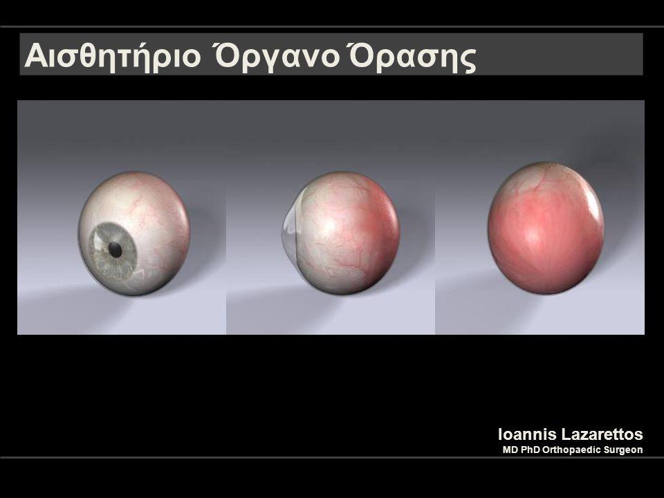 Ioannis Lazarettos MD PhD Orthopaedic Surgeon 2 Αισθητήριο Όργανο Όρασης Το αισθητήριο όργανο της όρασης είναι ο οφθαλμός Ανατομικά Στοιχεία Βολβός Οπτικό Νεύρο Βλέφαρα Επιπεφυκότας Δακρυϊκή Συσκευή Περιόφθαλμος Περιτονία Μύες του Οφθαλμού (6)