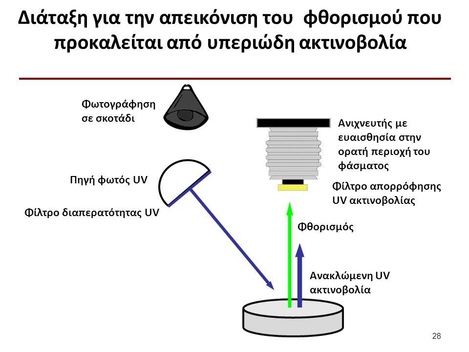 Διάταξη για την απεικόνιση του φθορισμού που προκαλείται από υπεριώδη ακτινοβολία 28 Φωτογράφηση σε σκοτάδι Πηγή φωτός UV Φίλτρο διαπερατότητας UV Φθορισμός Ανακλώμενη UV ακτινοβολία Φίλτρο απορρόφησης UV ακτινοβολίας Ανιχνευτής με ευαισθησία στην ορατή περιοχή του φάσματος