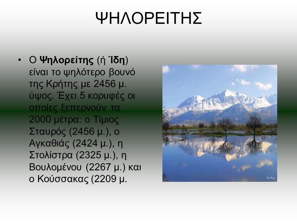 ΨΗΛΟΡΕΙΤΗΣ Ο Ψηλορείτης (ή Ίδη) είναι το ψηλότερο βουνό της Κρήτης με 2456 μ. ύψος. Έχει 5 κορυφές οι οποίες ξεπερνούν τα 2000 μέτρα: ο Τίμιος Σταυρός
