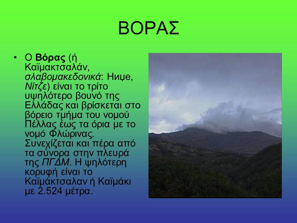 ΓΚΙΩΝΑ Η Γκιώνα είναι το υψηλότερο βουνό της Στερεάς Ελλάδας, τοποθετημένο στην Φωκίδα ανάμεσα στον Παρνασσό και τα Βαρδούσια.
