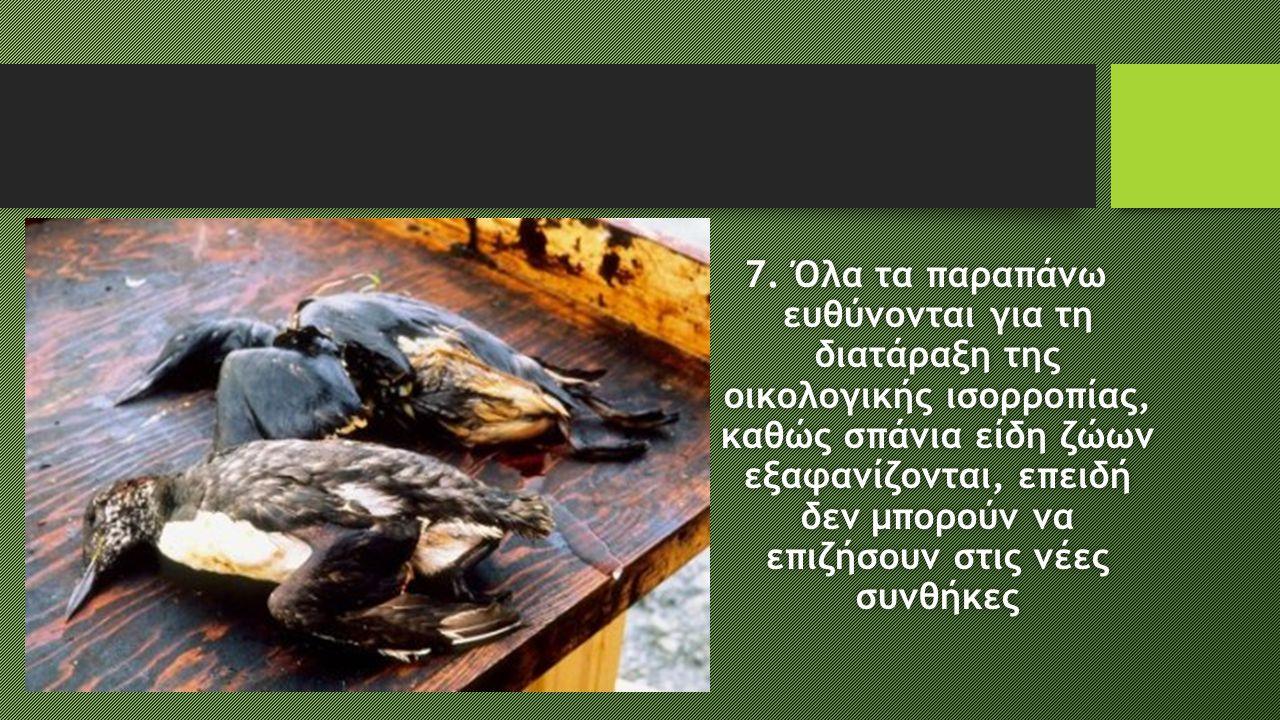 7. Όλα τα παραπάνω ευθύνονται για τη διατάραξη της οικολογικής ισορροπίας, καθώς σπάνια είδη ζώων εξαφανίζονται, επειδή δεν μπορούν να επιζήσουν στις