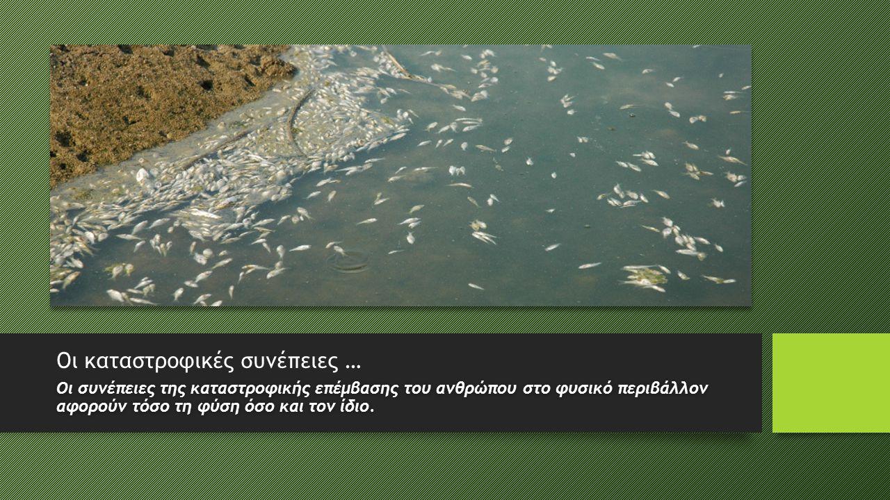 Οι καταστροφικές συνέπειες … Οι συνέπειες της καταστροφικής επέμβασης του ανθρώπου στο φυσικό περιβάλλον αφορούν τόσο τη φύση όσο και τον ίδιο.