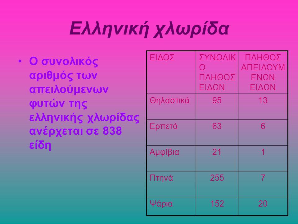 Ελληνική χλωρίδα Ο συνολικός αριθμός των απειλούμενων φυτών της ελληνικής χλωρίδας ανέρχεται σε 838 είδη ΕΙΔΟΣΣΥΝΟΛΙΚ Ο ΠΛΗΘΟΣ ΕΙΔΩΝ ΠΛΗΘΟΣ ΑΠΕΙΛΟΥΜ Ε