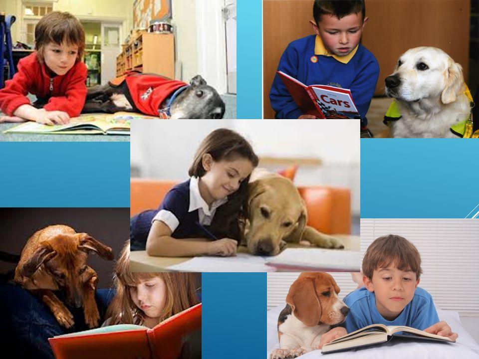«Ο καλύτερος φίλος του ανθρώπου, εκτός του σκύλου, είναι το βιβλίο. Διότι εντός του σκύλου δεν μπορείς να διαβάσεις.» Γκράουτσο Μαρξ