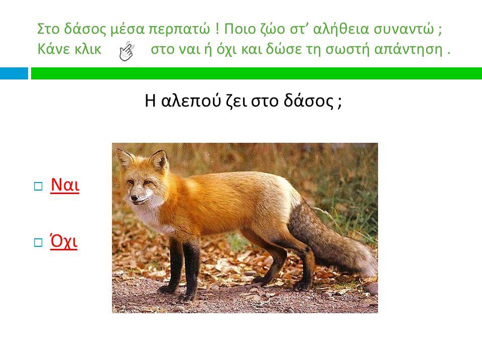 Ένα παιχνίδι για τα ζώα των ελληνικών δασών.ΣΤΟ ΔΑΣΟΣ ΜΕΣΑ ΠΕΡΠΑΤΩ .