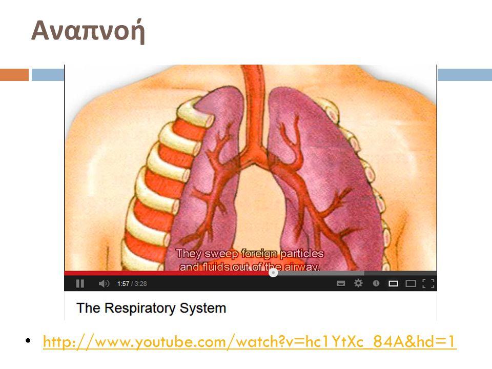 Αναπνοή http://www.youtube.com/watch?v=hc1YtXc_84A&hd=1